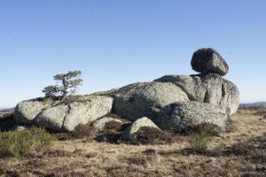 equilibre - L'Aubrac en sa maison …Regard sur la préhistoire …