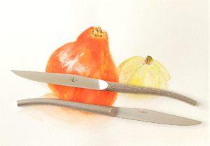 couteau de table laguiole Starck
