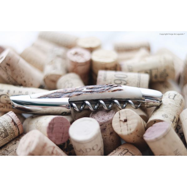 Kopie von F0429409 9ABD 4D92 804B F2EE1DD01369 - Sommelier knife, shiny finish with Deer antler handle